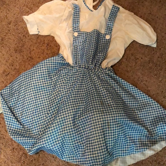 Other - Dorthy costume wizard of oz